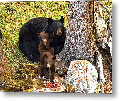 Protein For The Youngsters Metal Print by Adam Jewell