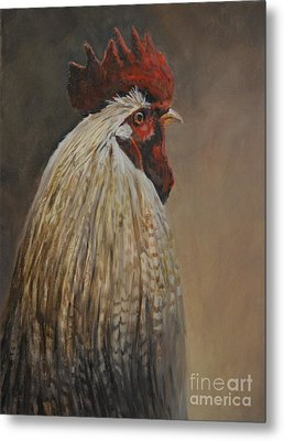 Proud Rooster Metal Print by Charlotte Yealey