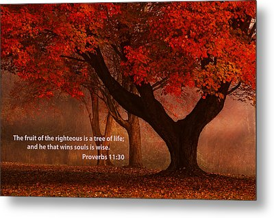 Metal Print featuring the photograph Proverbs 11 30 Scripture And Picture by Ken Smith