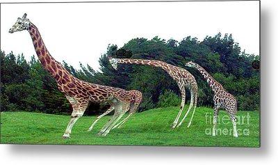 Metal Print featuring the digital art Psychedelic Giraffes by Merton Allen