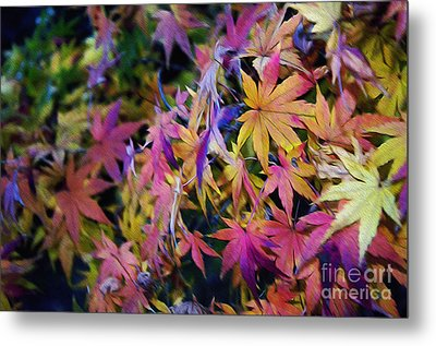 Psychedelic Maple Metal Print by Kaye Menner