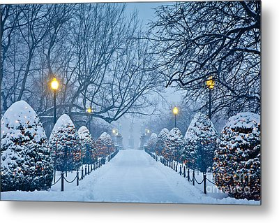 Public Garden Walk Metal Print by Susan Cole Kelly