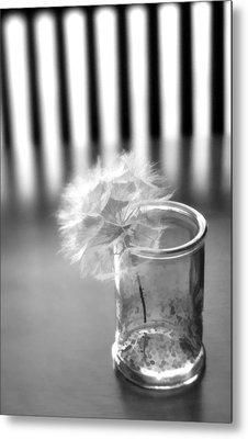 Metal Print featuring the photograph Puff Ball by Diane Alexander
