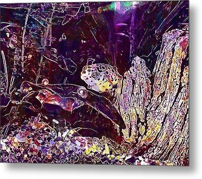 Puffer Fish Toxic Aquarium Fish  Metal Print