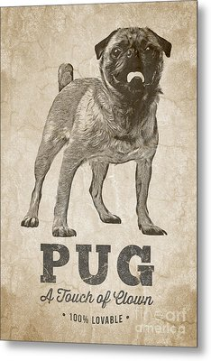 Pug A Touch Of Clown Metal Print by Edward Fielding