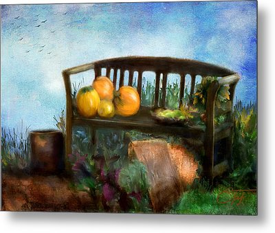 Pumpkin Harvest Respite Metal Print by Colleen Taylor