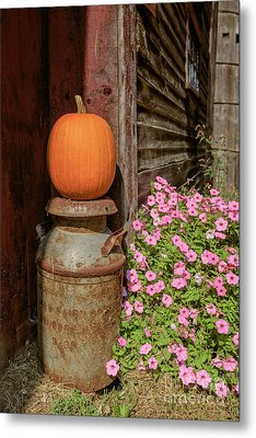 Pumpkin On An Old Milk Can Metal Print