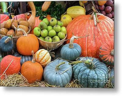 Pumpkins And Fruit Metal Print by Tim Gainey