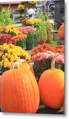 Pumpkins And Mums In Farmstand Metal Print by John Burk