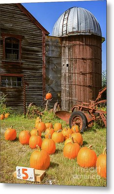 Pumpkins For Sale Old New England Farm Metal Print