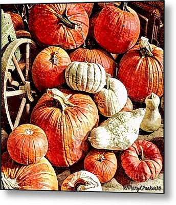 Pumpkins In The Barn Metal Print