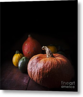Pumpkins Metal Print by Jelena Jovanovic