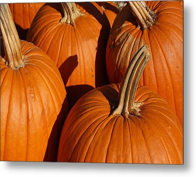 Pumpkins Metal Print by Michael Thomas