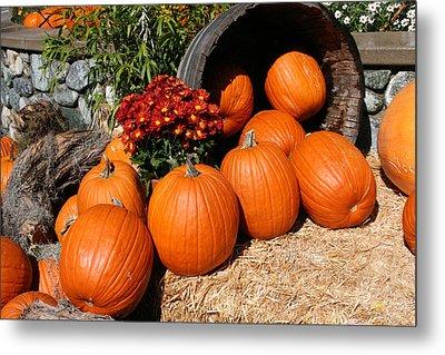 Pumpkins- Photograph By Linda Woods Metal Print