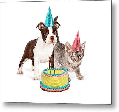 Puppy And Kitten With Birthday Cake Metal Print by Susan Schmitz