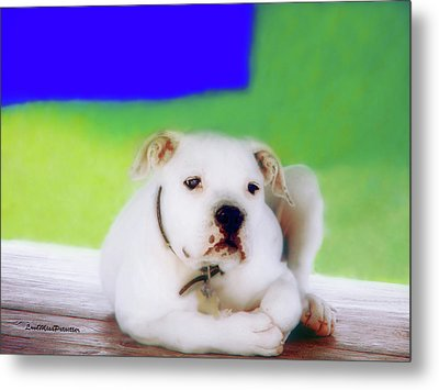Puppy Art 2 Metal Print