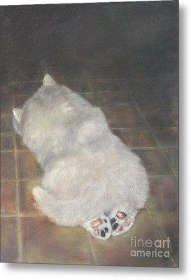 Puppy Feet Metal Print by Elizabeth Ellis