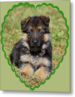 Metal Print featuring the photograph Puppy In Heart by Sandy Keeton