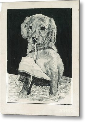 Puppy With Shoe Metal Print by Samuel Showman