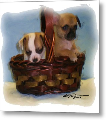 Pups In A Basket Metal Print by Beverly Johnson