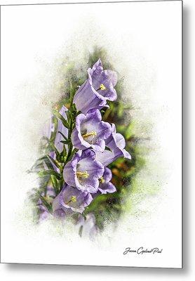 Purple Canterbury Bells Metal Print by Joann Copeland-Paul