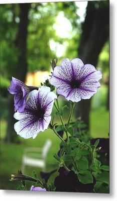Metal Print featuring the photograph Purple Delights by Kicking Bear  Productions