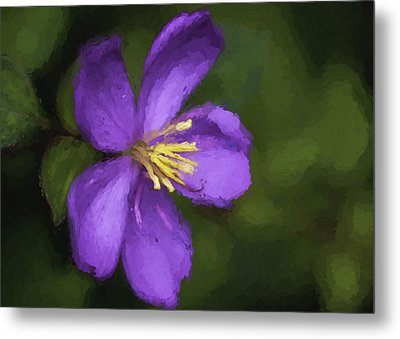 Metal Print featuring the photograph Purple Flower Macro Impression by Dan McManus
