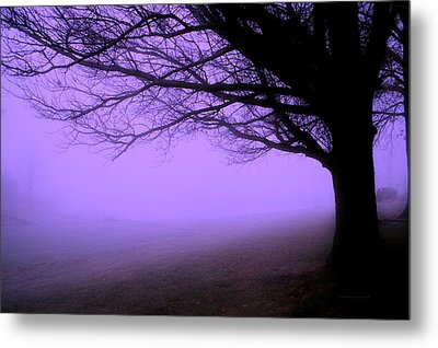 Purple Haze December Fog By The Sleepy Pin Oak Pa Metal Print by Thomas Woolworth