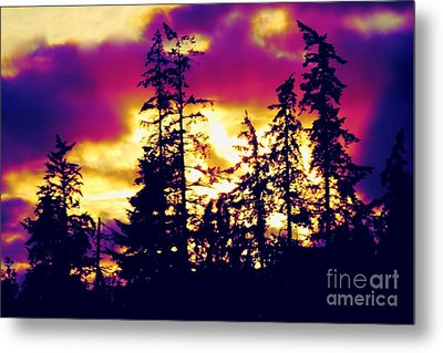 Metal Print featuring the photograph Purple Haze Forest by Nick Gustafson