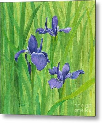 Purple Iris Metal Print by Phyllis Howard