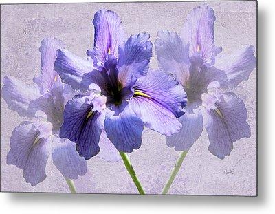 Purple Irises Metal Print by Rosalie Scanlon