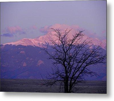 Purple Mountain Majesty Metal Print by Adrienne Petterson