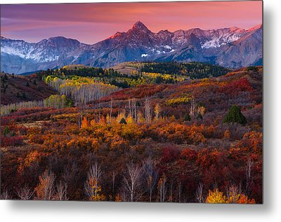 Purple Mountains Majesty Metal Print by Tim Reaves
