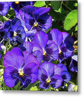 Purple Pansies In Morning Light Metal Print