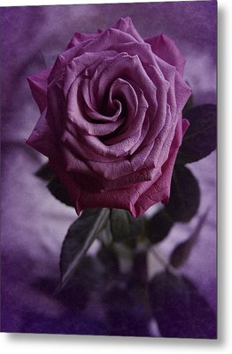 Metal Print featuring the photograph Purple Rose Of December by Richard Cummings