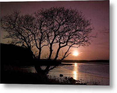 Purple Sunset With Tree And Lake Metal Print by Gabor Pozsgai