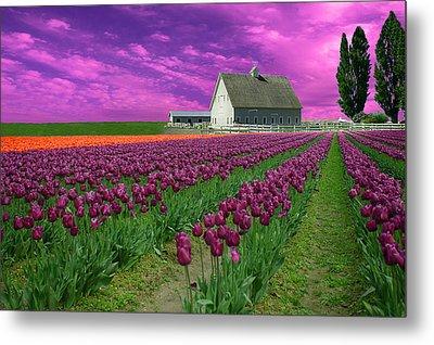 Purple Tulips With Pink Sky Metal Print
