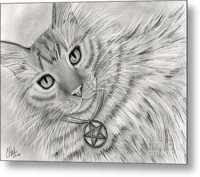 Metal Print featuring the drawing Purrfect Page Of Pentacles - Tarot Card Art by Carrie Hawks