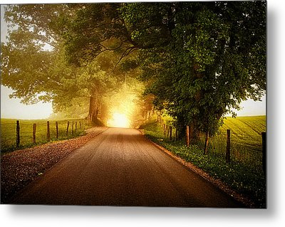 Pursuing The Light Metal Print by Andrew Soundarajan