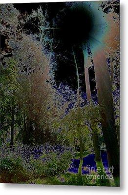 Metal Print featuring the photograph Pushkin Treescape by Robert D McBain