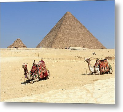 Metal Print featuring the photograph Pyramids Of Giza by Silvia Bruno