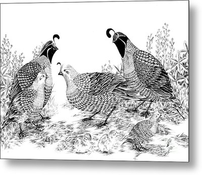 Quail Family Reunion Metal Print