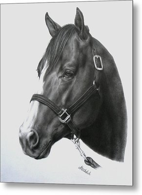Quarter Horse Portrait Metal Print by Margaret Stockdale