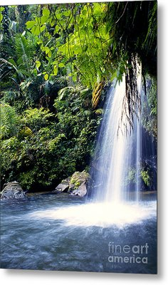 Quebrada Juan Diego Waterfall Metal Print by Thomas R Fletcher