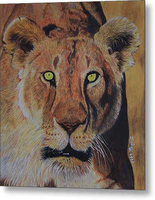 Queen Of The Jungle Metal Print by Don MacCarthy