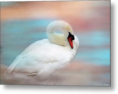 Queen Of The Lake Metal Print