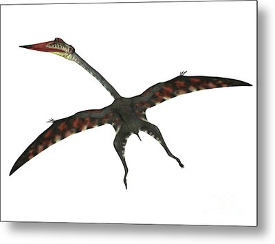 Quetzalcoatlus Flying Reptile Metal Print by Corey Ford