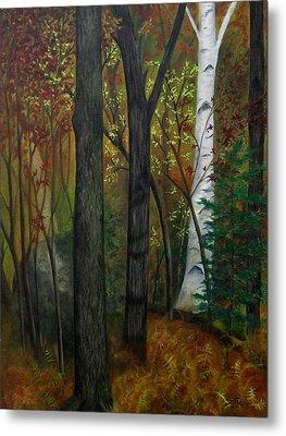 Quiet Autumn Woods Metal Print