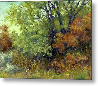 Quiet Moment Metal Print by David King