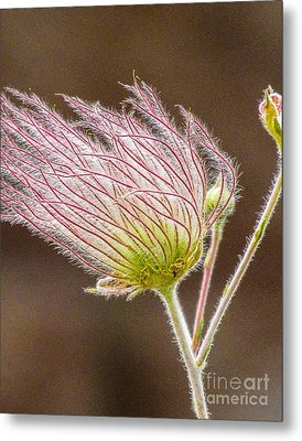 Quirky Red Squiggly Flower 1 Metal Print
